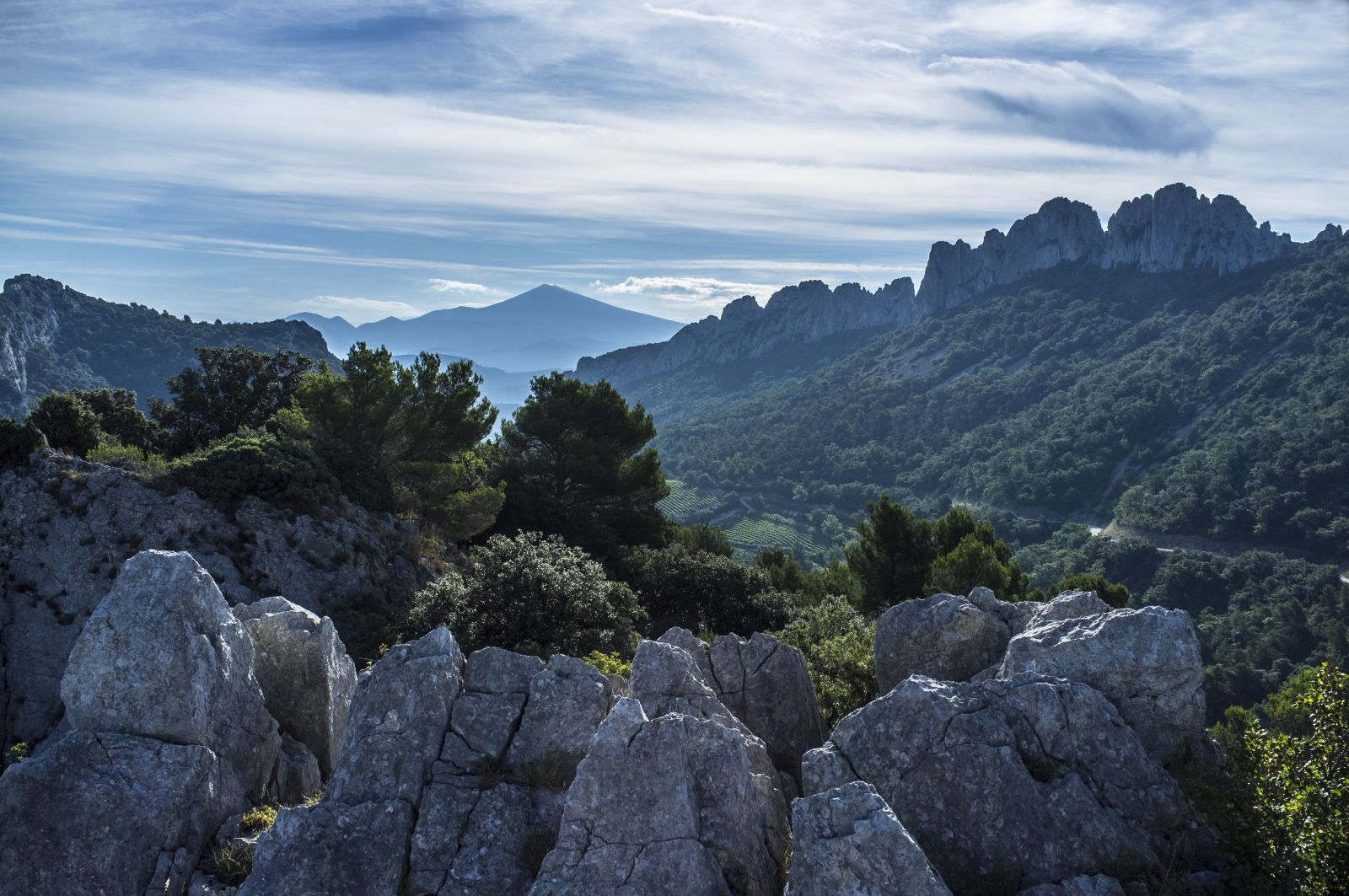 The Dentelles, Southern France and Mont Ventoux in the distance