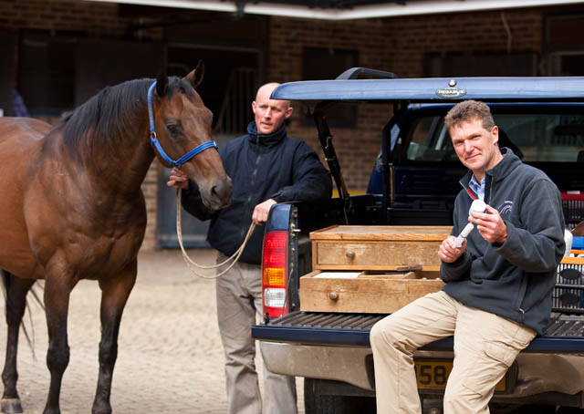 Pr shot for Equine Vets